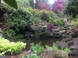 Whirlowbrook Garden